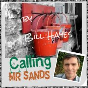 Calling Mr Sands by Bill Hayes
