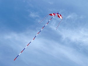 Total freedom?  Image of a kite by sea turtle via Flickr
